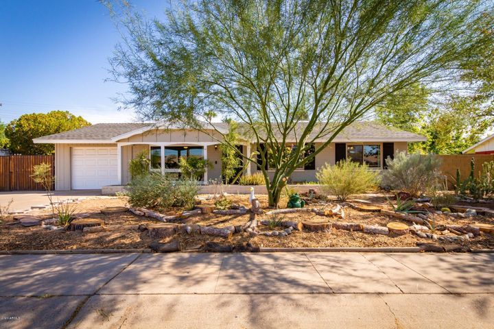 Desert Landscaped Front Entrance 18th Ave --Palo Verde stretches over wide variety of desert plants!