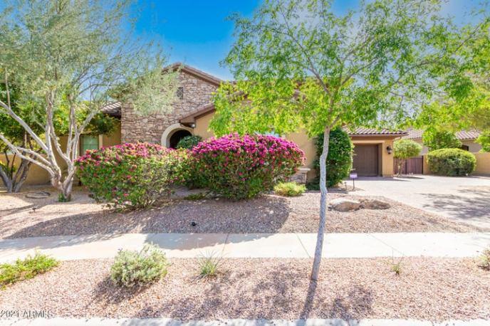 273 W MALIBU Drive, Chandler, AZ 85248