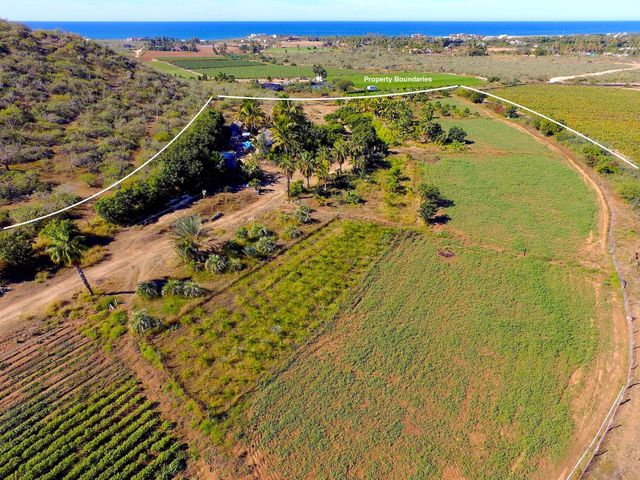 Palm and Produce, 5.4 Acre Palm and Produce Farm, Pacific,