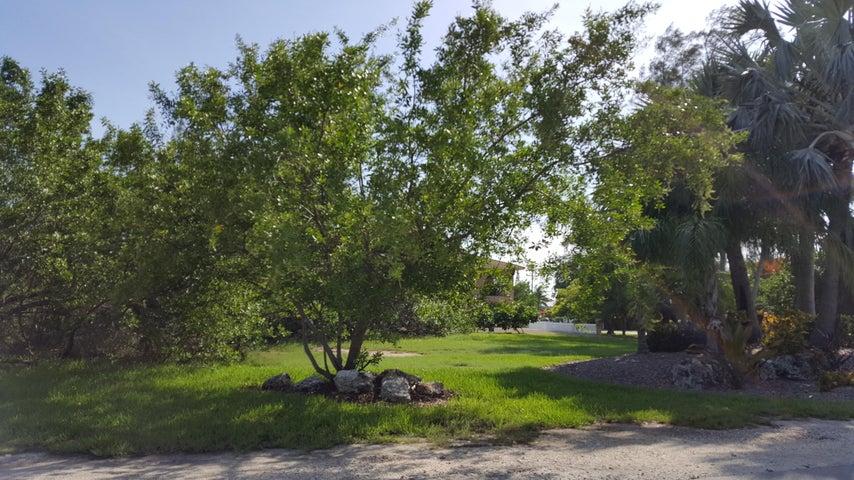 BIMINI Drive, Duck Key, FL 33050