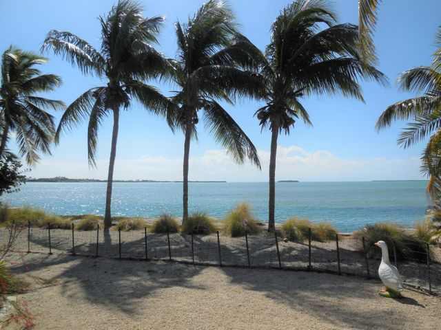 24388 W CARIBBEAN Drive, Summerland Key, FL 33042