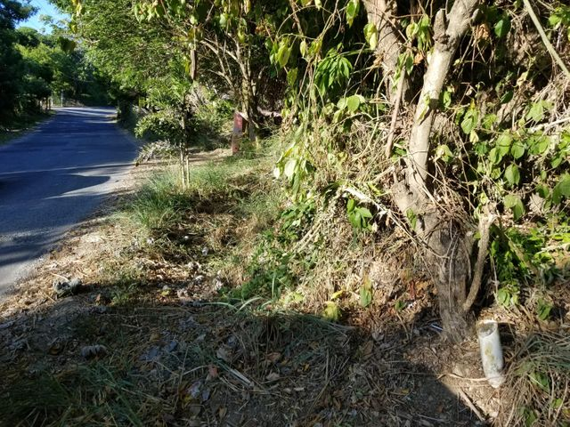 West Bay Road, .16 acres lot with views, Roatan,