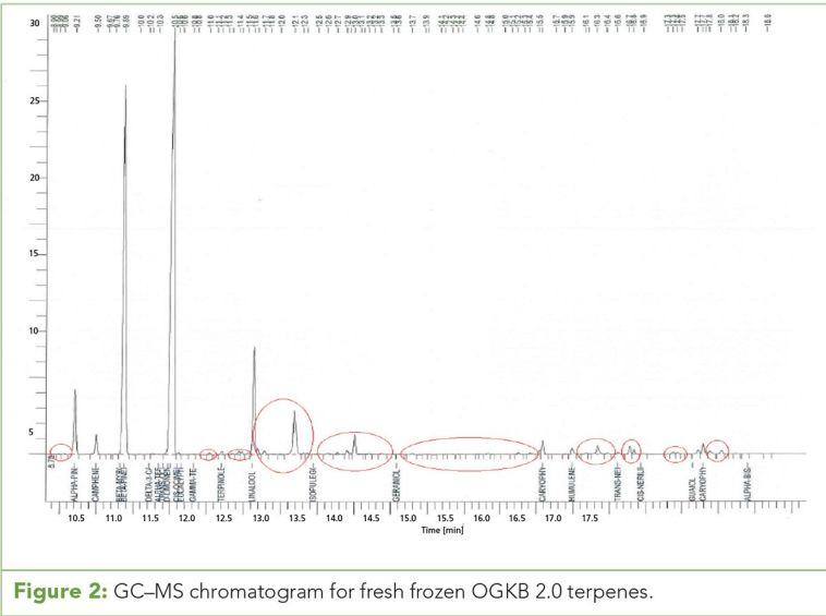 Figure 2: GC–MS chromatogram for fresh frozen OGKB 2.0 terpenes.