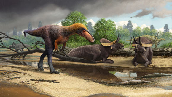 An artist's rendering of how Suskityrannus hazelae may have looked. Image credit: Andrey Atuchin.