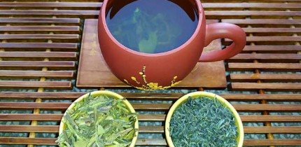 Lin et al suggest that the use of green tea can be combined with a balanced and healthy diet and regular physical exercise in the management of obese patients. Image credit: Sci-News.com.