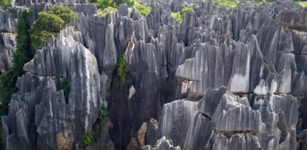 Stone forest in Yunnan province, China. Image credit: Zhang Yuan.
