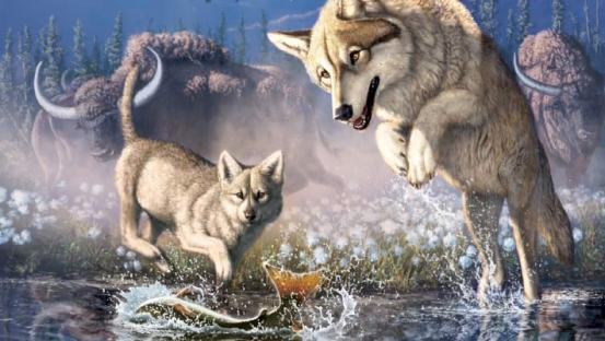Frozen remains of a 57,000 – year – old wolf cub found in Canada  Genetics, Paleontology