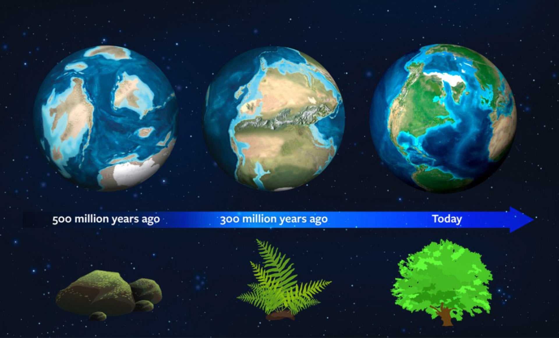 Earth S Natural History May Serve As Guide For