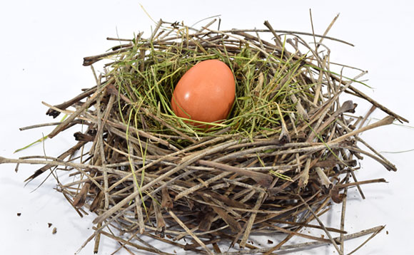 A small egg in the center of a birds nest made of twigs