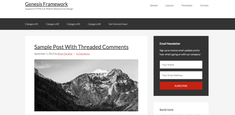 WordPress Genesis Theme Screenshot