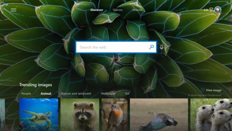 Microsoft Bing is Launching an Xbox App