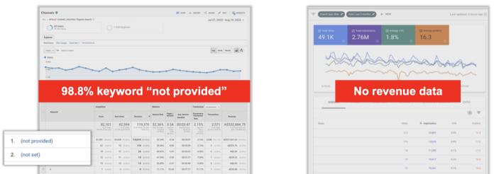 Organic search - No revenue data