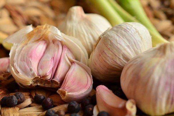 Чеснок – польза и вред для здоровья по мнению врачей | СЕГОДНЯ