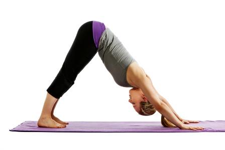 Downward Dog Yoga