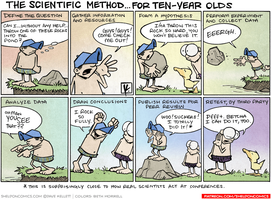Image result for scientific method comic