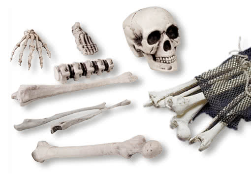 https://i1.wp.com/cdn.shockers.de/out/pictures//master/product/1/kunststoff_knochen-plastik_skelett-deko_knochen-realistische_knochen-plastic_bones-18870.jpg
