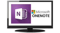 Office home and business Onenote