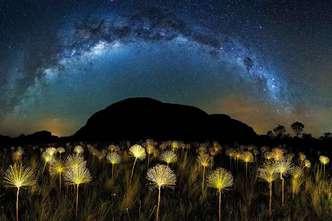 imagem do céu estrelado na chapada dos veadeiros por marcio cabral