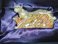 Duma - cheetah from the earth Ann Richmond