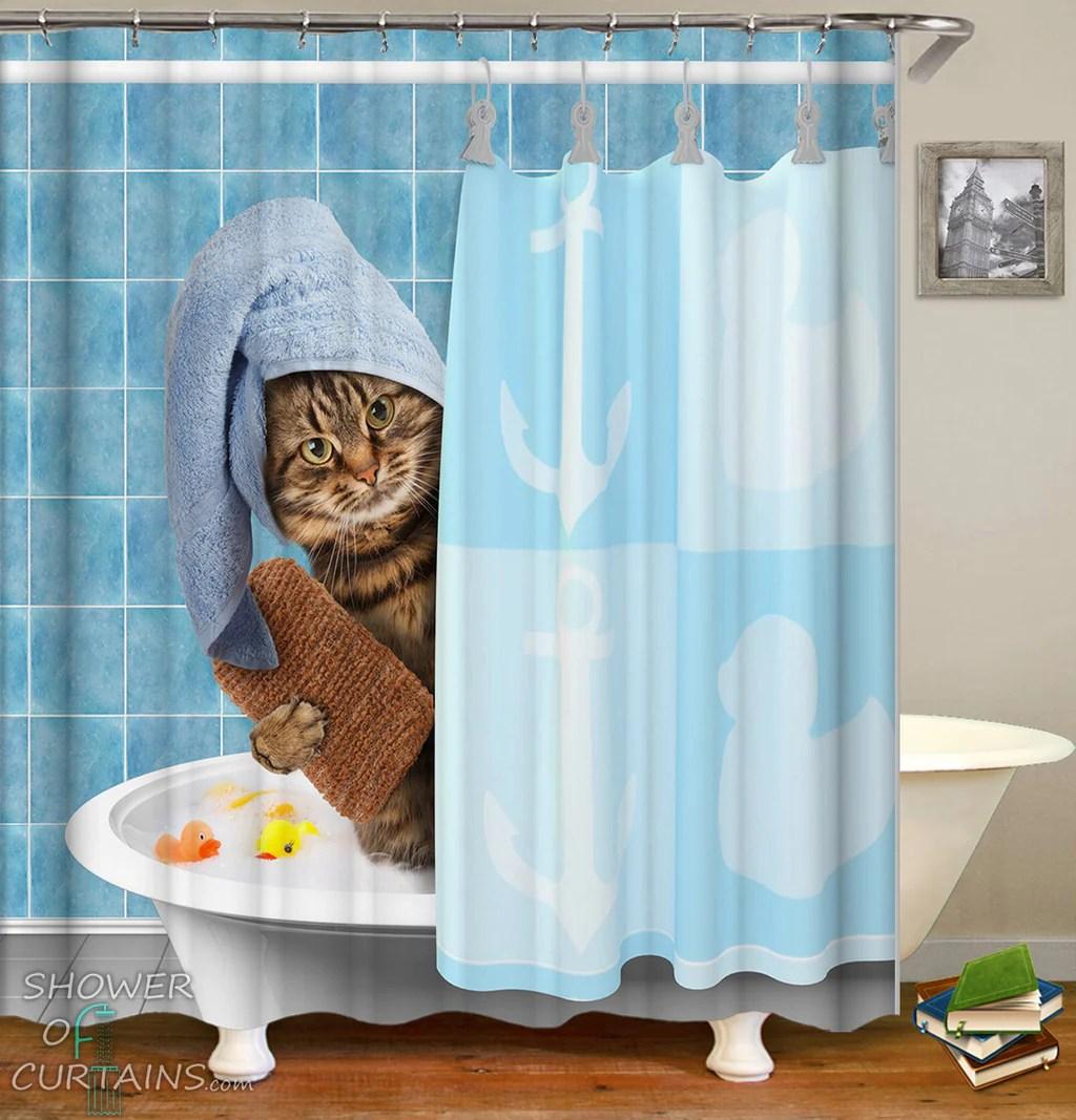 bathing cat