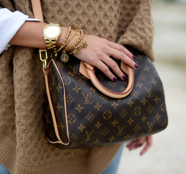 Louis Vuitton Bags 4 Ways – INSELLER