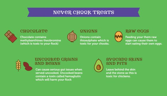 Avoid These Treats to Chickens