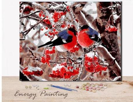 ref094 peinture par numeros kit diy deux rouge gorge 40x50cm