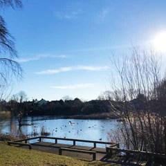 Shoebury Park