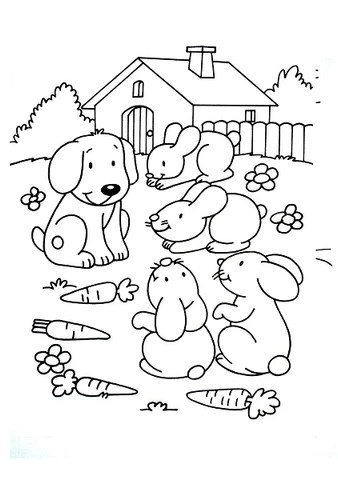 Free Quarantine Pet Coloring Pages For Kids The Pet Gourmet