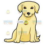 Golden Labrador Puppy Sitting Clipart Cartoons By Vectortoons
