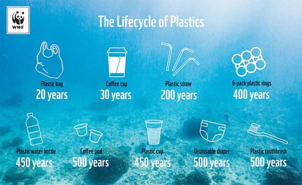 Ciclo di vita della plastica - infographic