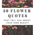 30 Flower Quotes That Tell You About Your Own Beauty Healing Brave