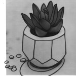 Succulent Sketch How To Draw With A Photo Reference Craft E Corner