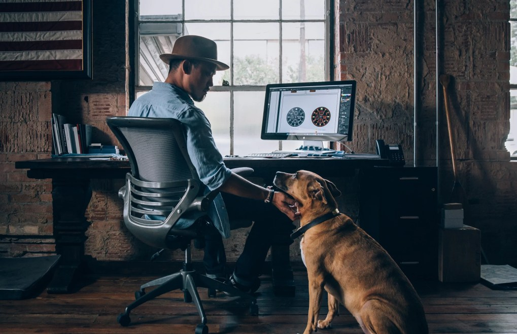 A person sitting at a desk and a dog look at each other