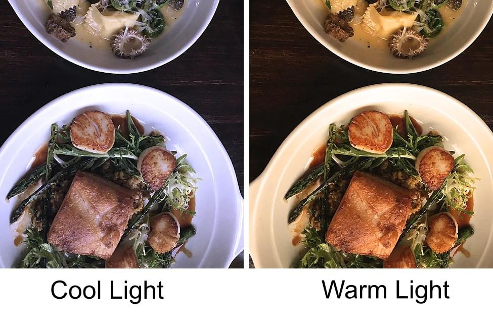 음식 사진 조명