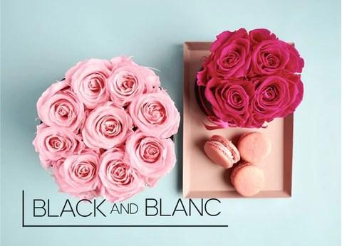 Fresh Roses Black & Blanc