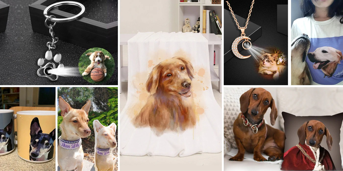 make a custom pet pillow out of your