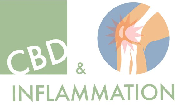 CBD and inflamation