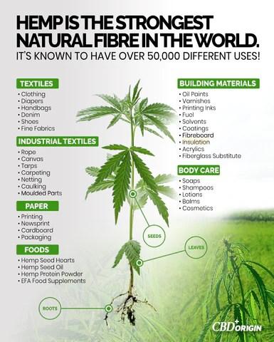Benefits of hemp, uses of hemp