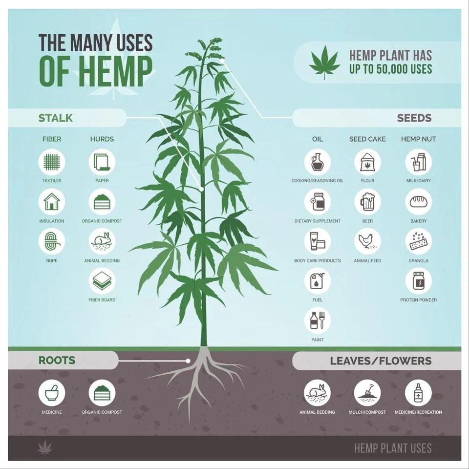 The uses of hemp