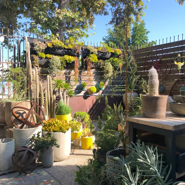 potted indoor style for outdoor living