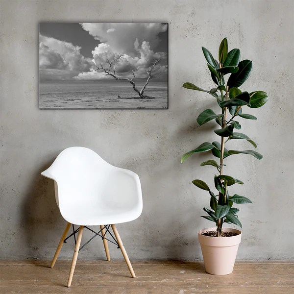 Wanderlust High Contrast Black and White landscape photograph as a classic wall decorating canvas print