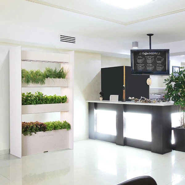 indoor vertical garden system The Wall Farm indoor vertical garden | Click & Grow