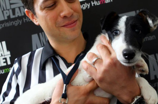 Puppy Bowl referee holding homeless rescued shelter dog in black and white