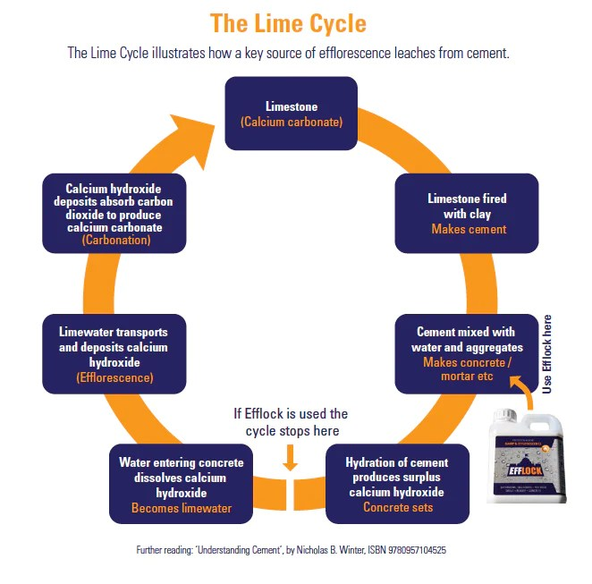 Understanding 'The Lime Cycle' helps to understand why we