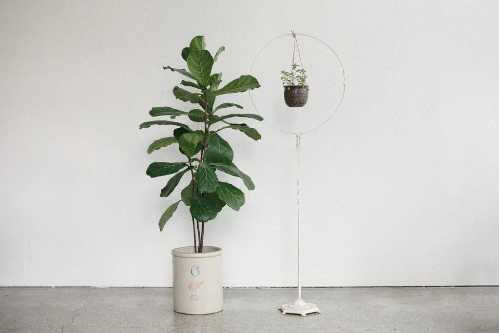 Hanging Plant Stand   Homestead Seattle on Hanging Plant Stand  id=51235