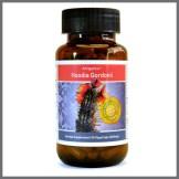Hoodia Gordonii - Natural appetite suppresant - Bio-Sil South Africa - Wishing you abundant health