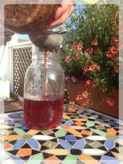 herbal tea, loose leaf tea, tea blend, jar, water, brew, sun tea, summer