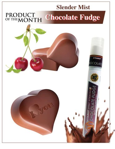 VitaMist SlenderMist Chocolate Fudge Diet Snack Substitute Spray