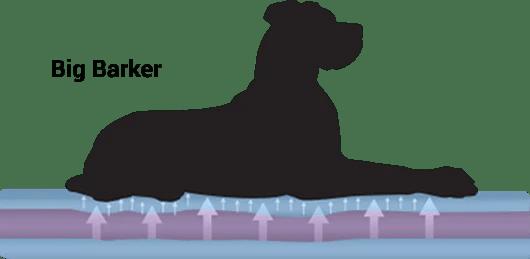 orthopedic dog beds for large extra large dogs big barker